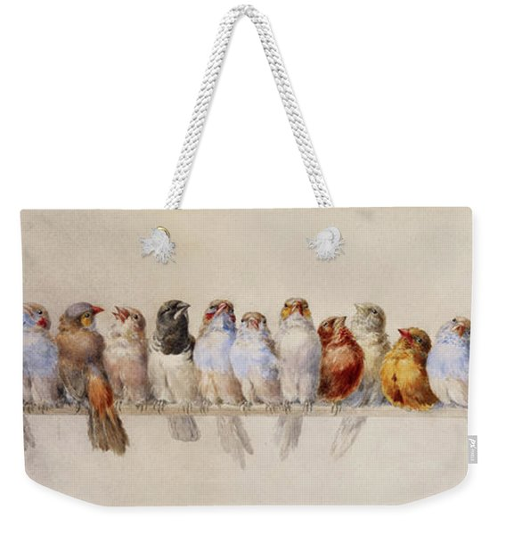 A Perch Of Birds  Weekender Tote Bag