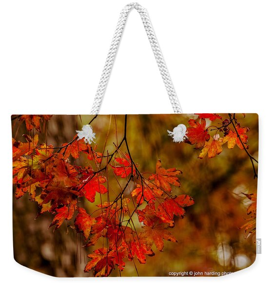 A Branch Of Autumn Weekender Tote Bag