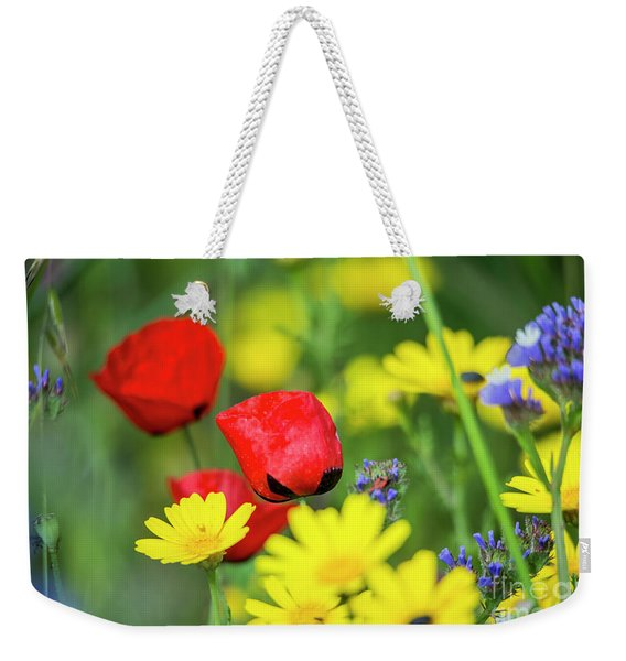 Weekender Tote Bag featuring the photograph A Bunch Of Colors by Arik Baltinester