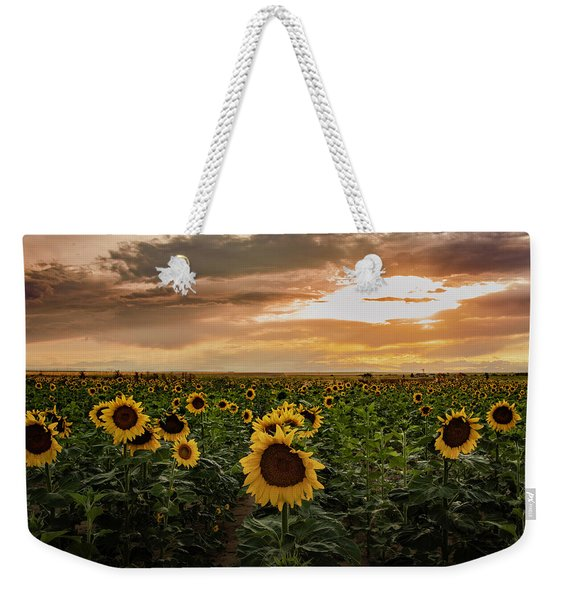 A Field Of Sunflowers At Sunset Weekender Tote Bag