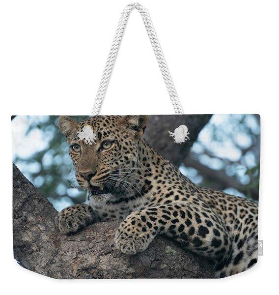 A Focused Leopard Weekender Tote Bag