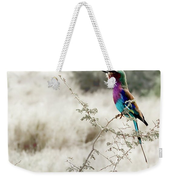A Lilac Breasted Roller Sings, Desaturated Weekender Tote Bag