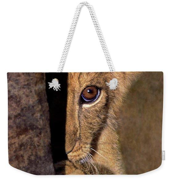 A Lion Cub Plays Hide And Seek Wildlife Rescue Weekender Tote Bag