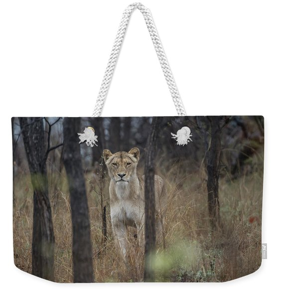 A Lioness In The Trees Weekender Tote Bag