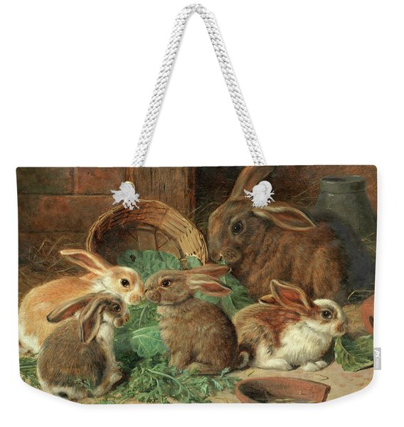 A Mother Rabbit And Her Young Weekender Tote Bag