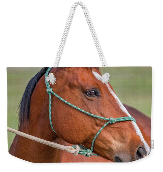 A Portrait Of A Horse Weekender Tote Bag