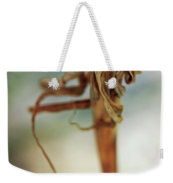 A Song That Goes Unsung Weekender Tote Bag