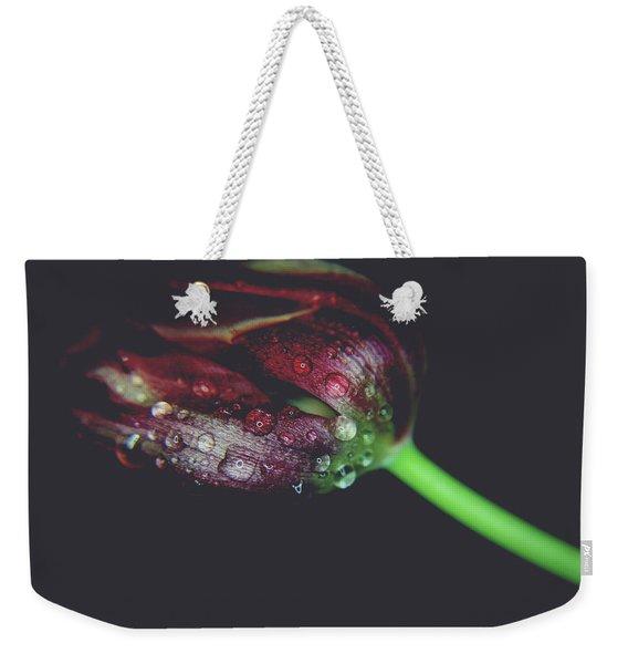 A Story Of Love Weekender Tote Bag