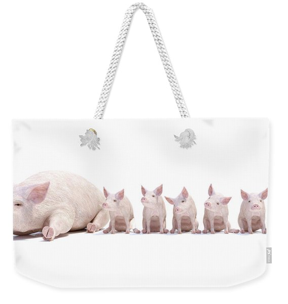 Adorable Little Family Weekender Tote Bag