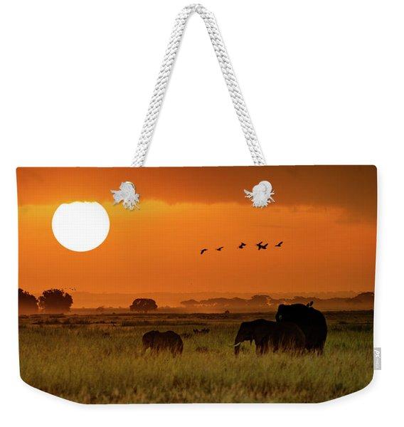 African Elephants Walking At Golden Sunrise Weekender Tote Bag