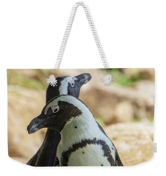 African Penguins Posing Weekender Tote Bag