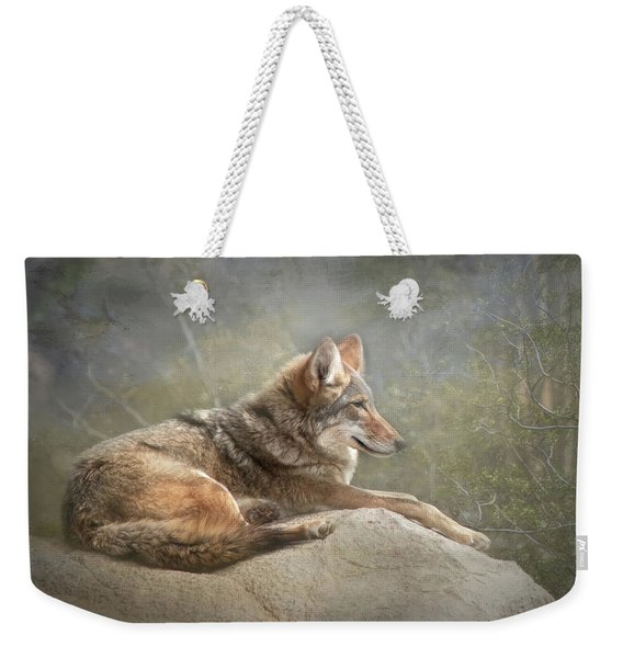 Afternoon Repose Weekender Tote Bag