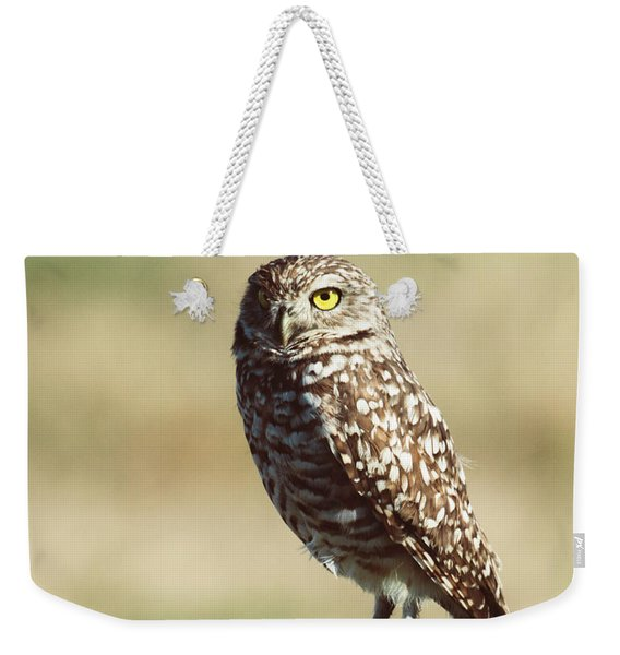 Weekender Tote Bag featuring the photograph Alert by Sally Sperry