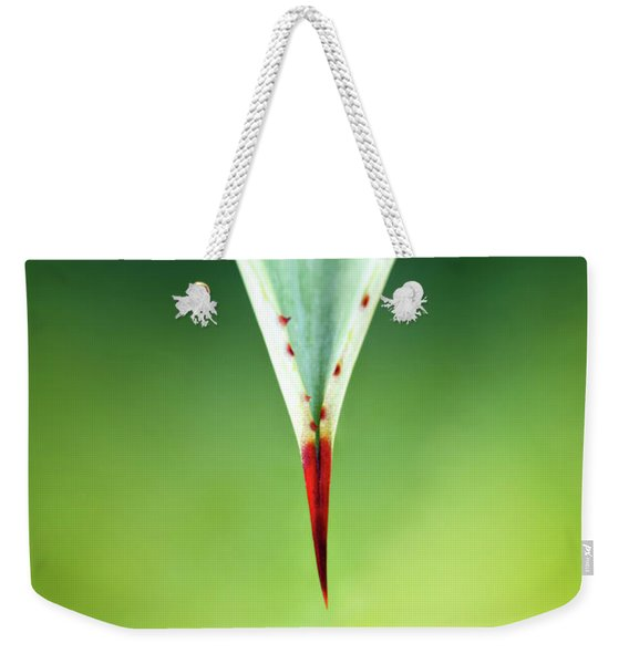 Aloe Thorn And Leaf Macro Weekender Tote Bag