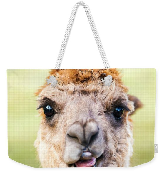 Weekender Tote Bag featuring the photograph Alpaca by Rob D Imagery