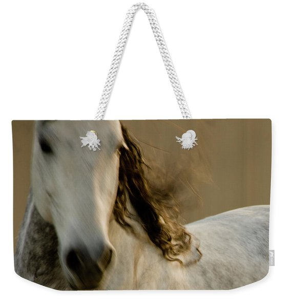 Weekender Tote Bag featuring the photograph Americano 1 by Catherine Sobredo