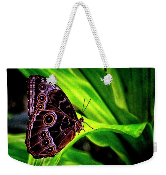 Nature's Exquisite Creation Weekender Tote Bag