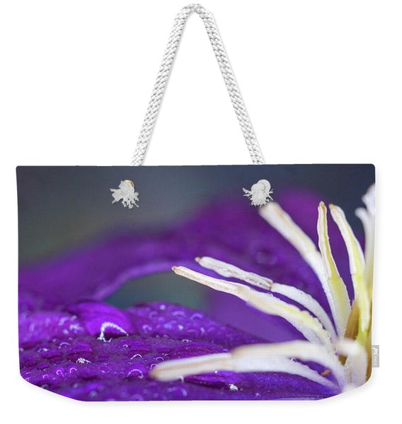 Weekender Tote Bag featuring the photograph Ancient Joy by Michelle Wermuth