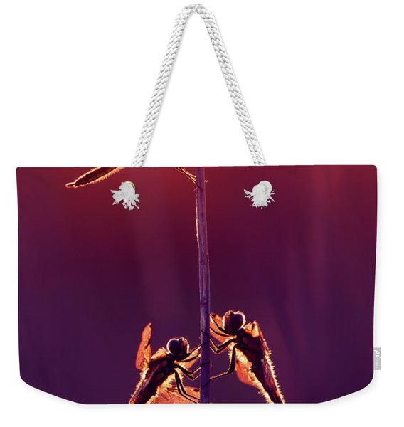 And Then I See A Lightness - Dragonflies At Sunset Weekender Tote Bag