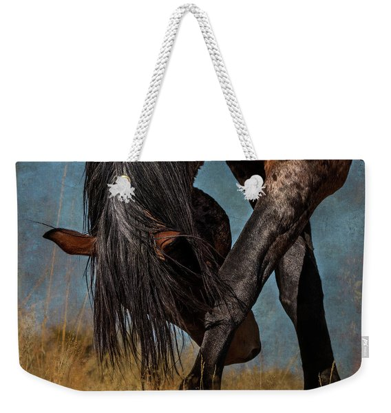 Angles Of The Horse Weekender Tote Bag