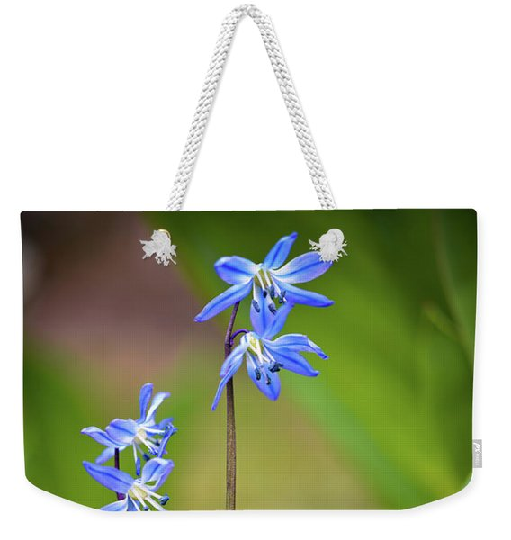 Weekender Tote Bag featuring the photograph Animated by Michelle Wermuth
