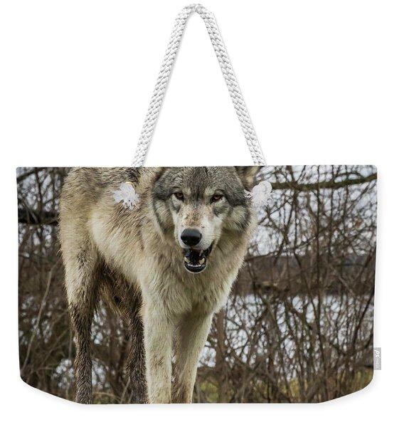 Anit I Pretty Weekender Tote Bag
