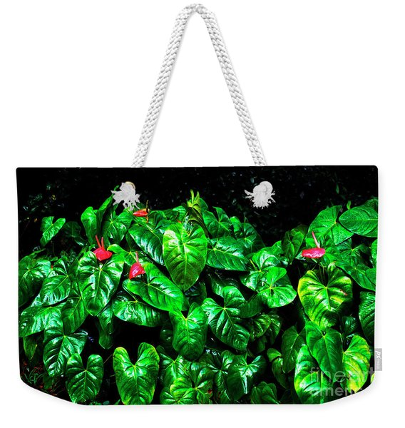 Anthuriums In The Rain Weekender Tote Bag