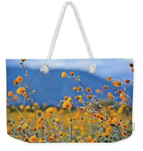 Anza Borrego Wild Desert Sunflowers Weekender Tote Bag