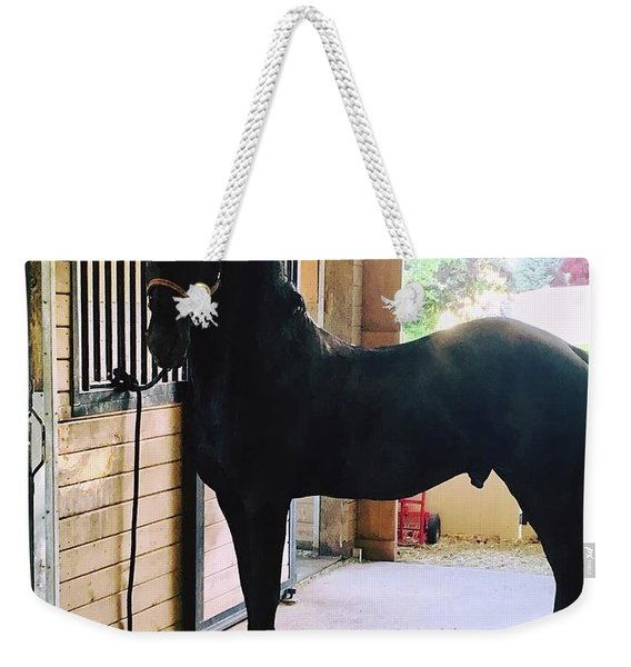 Apollo's Light Weekender Tote Bag