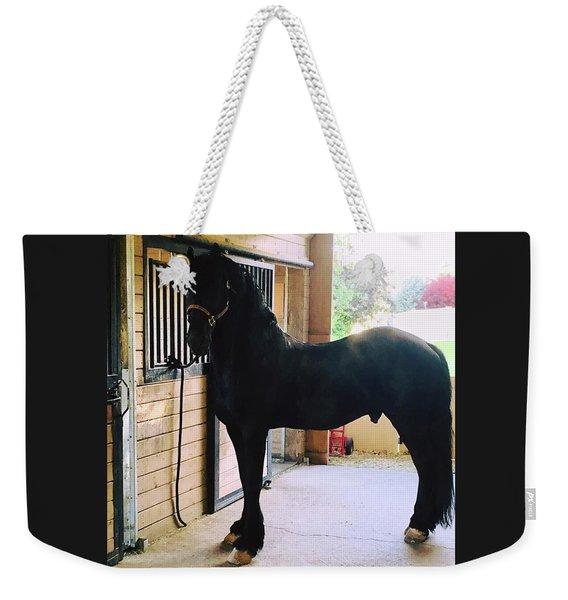 Apollo's Light Weekender Tote Bag