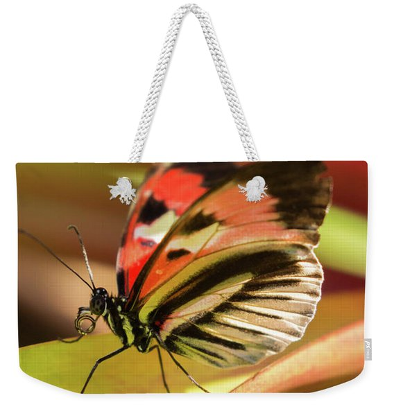 Art In Nature Weekender Tote Bag