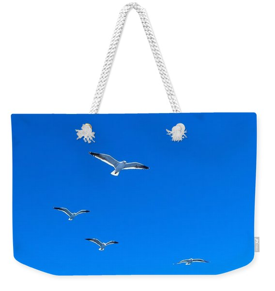 Group Of Seagulls On Blue Sky In The Argentine Patagonia Weekender Tote Bag