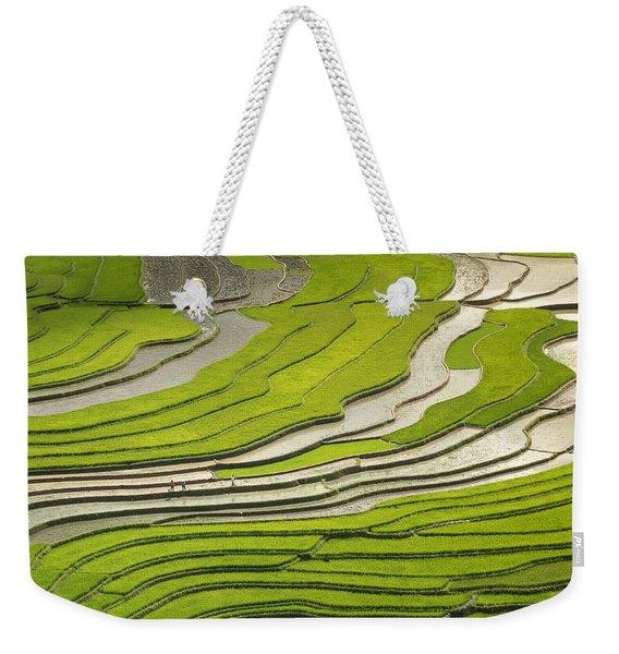 Asian Rice Field Weekender Tote Bag