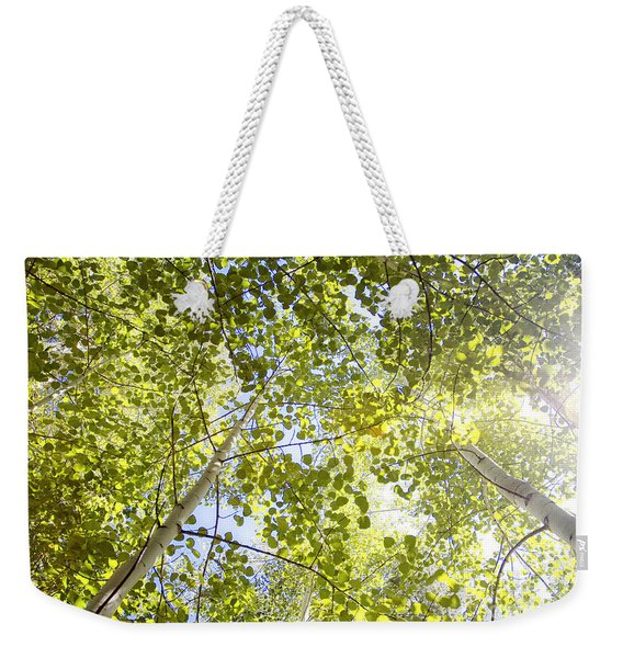 Aspen Canopy With Sun Flare Weekender Tote Bag