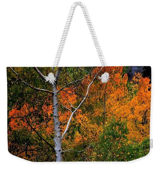 Aspens In Orange Weekender Tote Bag