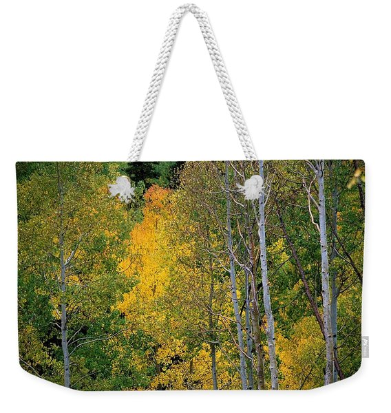Aspens In Yellow Weekender Tote Bag