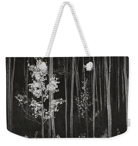 Aspens Northern New Mexico Weekender Tote Bag