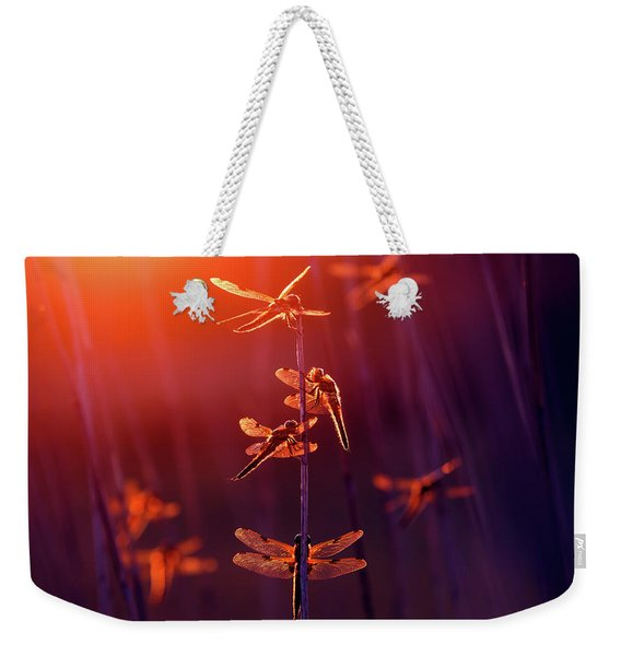 At The Fairy Fair - Dragonflies At Sunset  Weekender Tote Bag