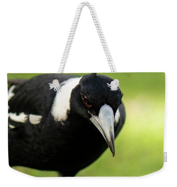 Australian Magpie Outdoors Weekender Tote Bag
