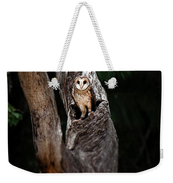 Weekender Tote Bag featuring the photograph Australian Masked Owl by Rob D Imagery