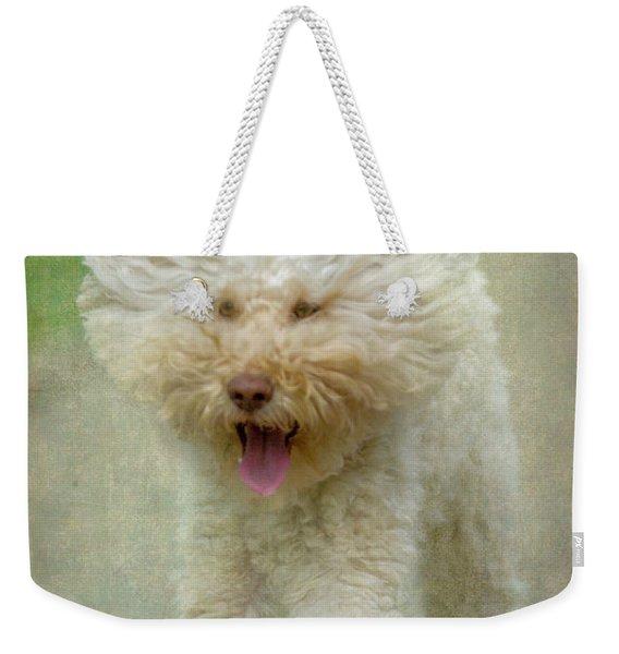 Australien Labradoodle Dog Weekender Tote Bag