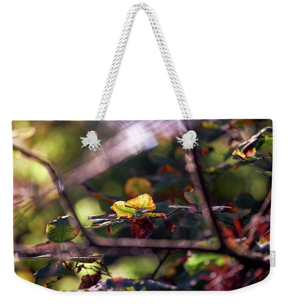 Weekender Tote Bag featuring the photograph Autumn Beginnings by Whitney Goodey