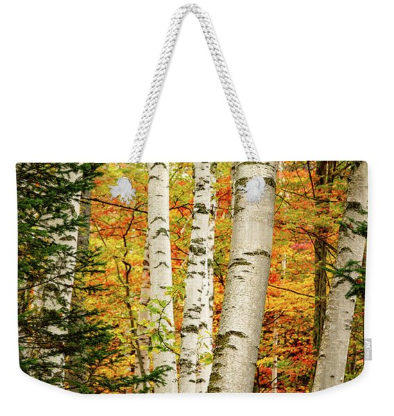 Weekender Tote Bag featuring the photograph Autumn Birch by Jeff Sinon