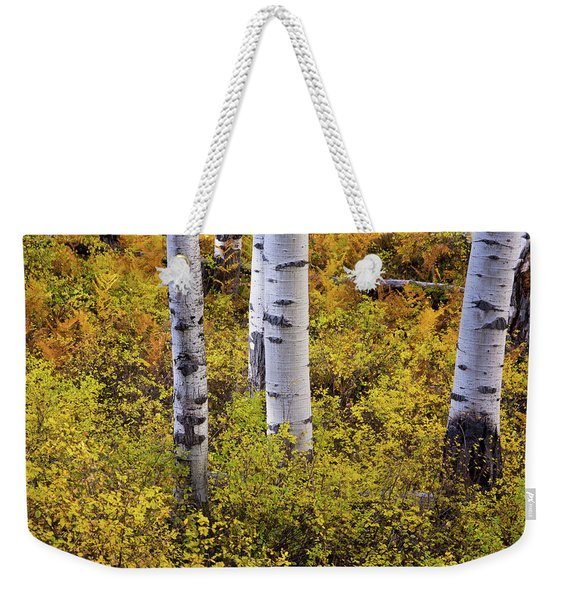 Weekender Tote Bag featuring the photograph Autumn Contrasts by John De Bord