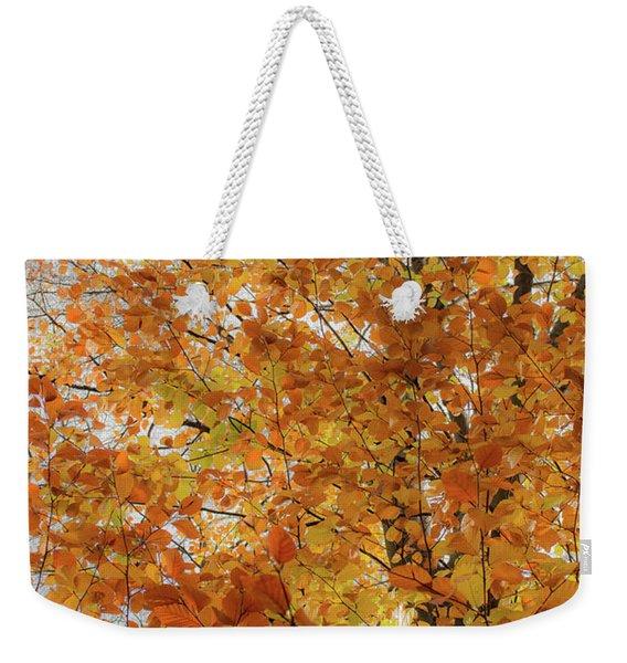Autumn Explosion 1 Weekender Tote Bag