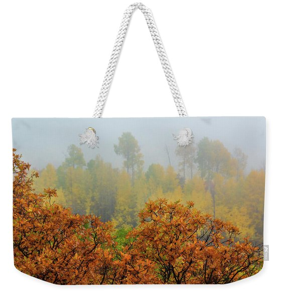 Weekender Tote Bag featuring the photograph Autumn Foggy Day by John De Bord