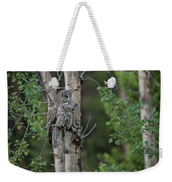 Weekender Tote Bag featuring the photograph B18 by Joshua Able's Wildlife
