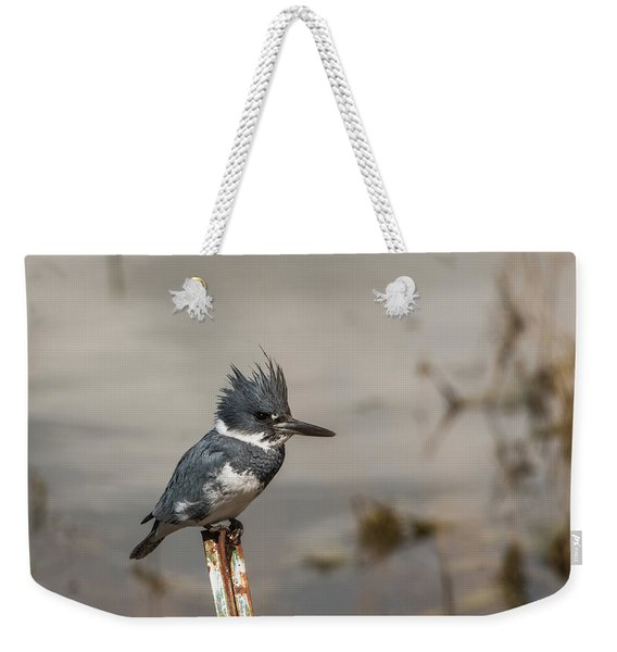 Weekender Tote Bag featuring the photograph B31 by Joshua Able's Wildlife
