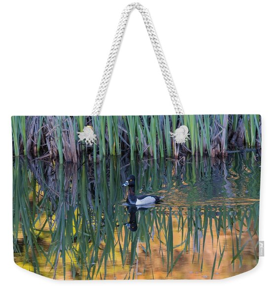 Weekender Tote Bag featuring the photograph B32 by Joshua Able's Wildlife
