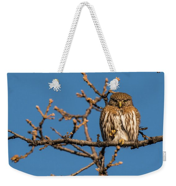 Weekender Tote Bag featuring the photograph B37 by Joshua Able's Wildlife